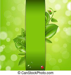 coccinella, mette foglie, fondo, natura