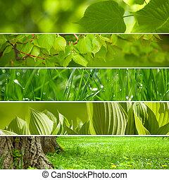 collage, fondo., verde, natura
