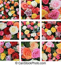 collage, rosa, multicolor