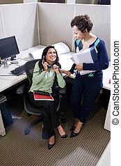 colleghi, ispanico, femmina, ufficio, due, riunione, cubicolo