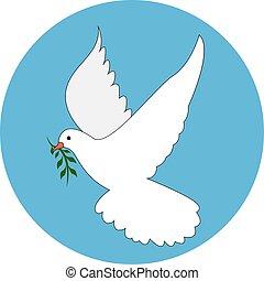 colomba, bianco, vettore, fondo., illustrazione