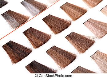 colorare, capelli, tavolozza, campioni, tinta