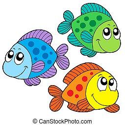 colorare, carino, pesci