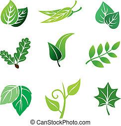colorare, foglie, set