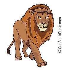 colorare, leone