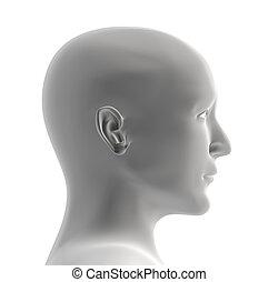 colorare, testa, grigio, umano