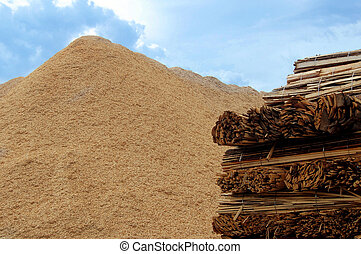 combustione, biomass
