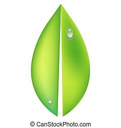 concetto, ecologia, foglia, illustrazione, vettore, verde, lucido, icona