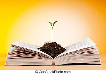 concetto, libri, conoscenza, semenzali