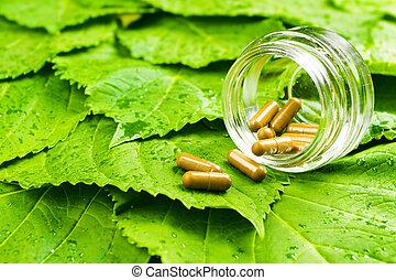 concetto, sano, sopra, vaso, leaves., vitamina, verde, pillole