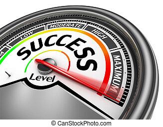 concettuale, indicare, successo, metro, massimo