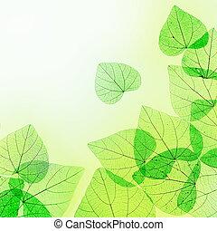 confine floreale, foglie, verde, giallo