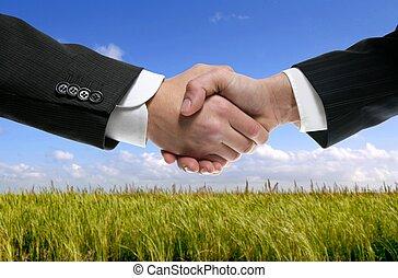 consoci, mani scotendo, uomo affari, natura