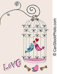 coppia, amare uccello, valentina