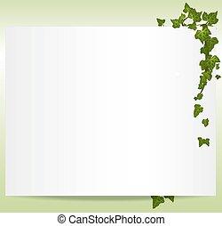 cornice, vettore, spring/summer, foglie, edera