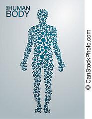 corpo, concetto, umano