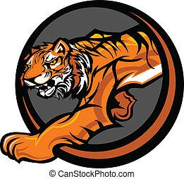 corpo, tiger, vettore, mascotte, grafico