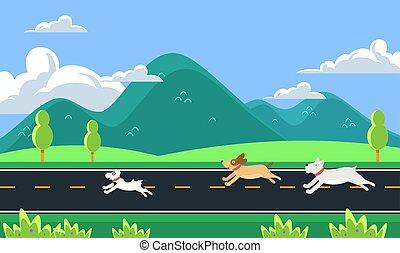 correndo, cani, mattina, strada