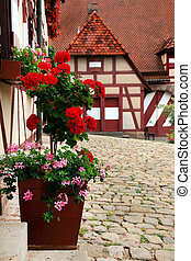cortile, kaiserburg, decorazione, flowers., parte, imperatore