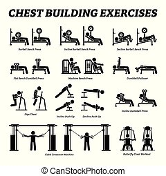 costruzione, figura, pictograms., torace, bastone, esercizi, muscolo
