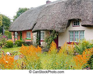 cottage, thatched, irlanda, tetto, tipico