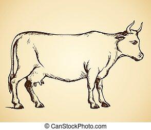 cow., vettore, disegno