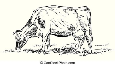 cow2, vettore, disegno, mano
