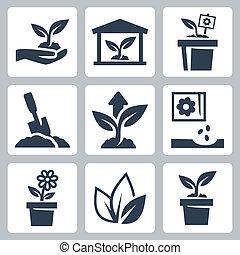 crescente, pianta, vettore, set, icone
