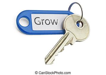 crescere, chiave