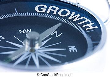 crescita, parola, bussola