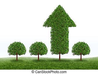 crescita, successo finanziario