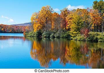 cresta blu, prezzo, riflesso, superficie, lago, fogliame, cadere, viale