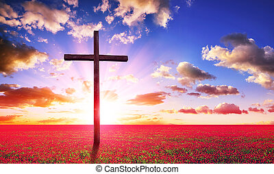 croce, legno, cristiano, sunset., azzurramento, prato