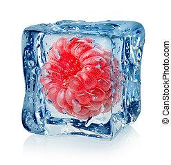 cubo, bacca, lampone, ghiaccio