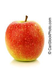 """cultivar, chiamato, lady"""", mela, """"pink"""