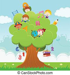 cultura, albero