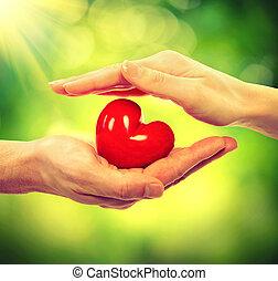 cuore, donna, natura, sopra, valentina, fondo, mani, uomo
