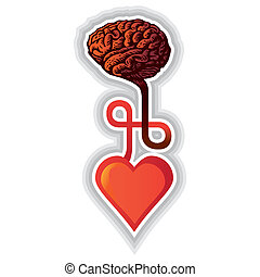 cuore, -, illustrazione, cervello, collegamento, fra