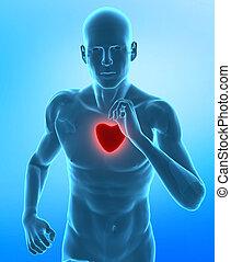 cuore sano, concetto