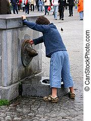 curioso, fontana, capretto