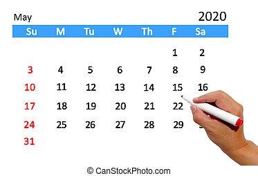 data, calendario, evidenziando, mano