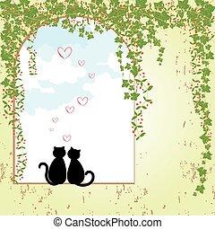 datazione, primavera, gatto