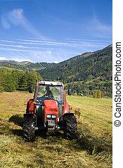 day., soleggiato, autunno, campo, aratura, trattore