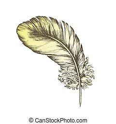 decorativo, colorare, volare, elemento, vettore, inchiostro, penna, uccello