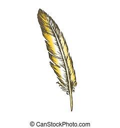 decorativo, colorare, volare, elemento, vettore, penna, uccello