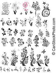 decorativo, elementi floreali, disegno, (