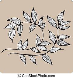 decorativo, illustrazione, foglie, vettore, ramo, hand-drawing.