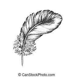 decorativo, volare, elemento, vettore, inchiostro, penna, uccello