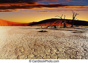 deserto, namib, namibia, sossusvlei