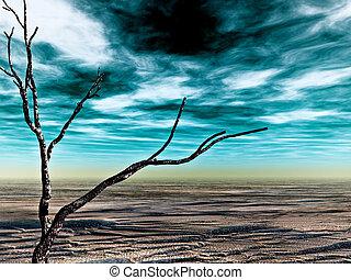 desolato, terra